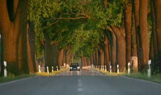 Auf Deutschlands Straßen ist der Weg das Ziel. (Foto)