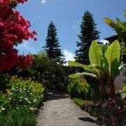 Urlaub in duftender Blütenpracht (Foto)