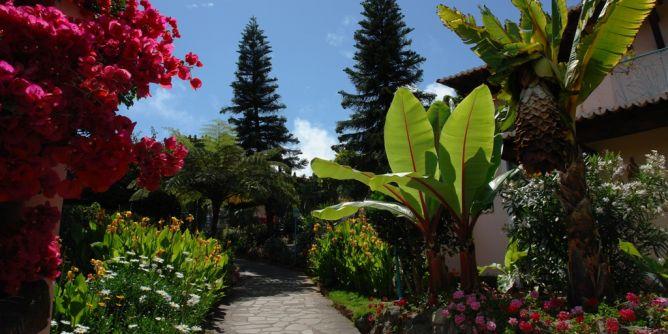 Garten (Bild)