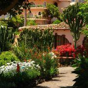 Urlaubsparadies für Botanikfreunde: Auf Madeira regiert die Blütenpracht das ganze Jahr über.