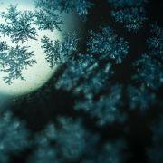 Da war der Sommer noch weit entfernt und der Winter streckten seine kühlen Fühler aus ...