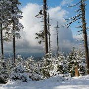 Winter-Wunder-Land: Lassen Sie dieses Bild einfach kurz auf sich wirken ...