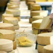 Kalb steckt auch in manchen Käsen. Sie werden mit tierischem Lab hergestellt, ein Abfallprodukt aus Kälbermägen.