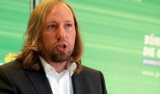 Energiewende: Grüne bieten Schwarz-Rot Zusammenarbeit an (Foto)