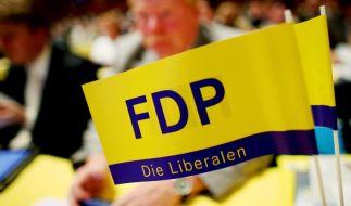 FDP-Chef Lindner attackiert Schwarz-Rot (Foto)