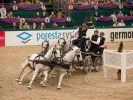 Bei dieser Kurvenlage kann kein Auto mithalten: Die Vierspänner auf der Partner Pferd. (Foto)