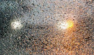Unfälle bei Straßenglätte:Kleine Crashs ohne Polizei regeln (Foto)