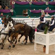 Bei der Qualifikation zum Weltcupfinale im Vierspänner ging es in der Leipziger Messe heiß her.