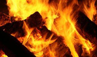 Scheite fürs warme Heim: Umweltgerecht Heizen mit Holz (Foto)