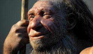 Neandertaler-Gene halfen bei Anpassung an kühle Umgebung (Foto)