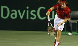 Tschechien und Japan im Davis-Cup-Viertelfinale (Foto)