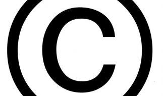Copyright für Fotos auf Webseiten direkt ins Bild setzen (Foto)