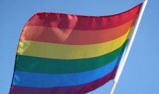 Google protestiert mit Regenbogen gegen Diskriminierung (Foto)