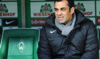Der 20. Bundesliga-Spieltag im Telegramm (Foto)
