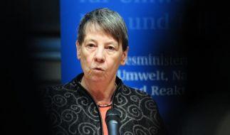 Umweltministerin Hendricks: «Es gibt keine Atom-Renaissance» (Foto)
