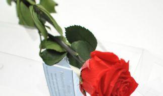 Unvergänglich wie die Liebe: Die immer blühende Rose ist das perfekte Geschenk zum Valentinstag. (Foto)