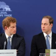 Prinz William und Prinz Harry helfen Flutopfern in England (Foto)
