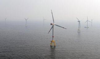 Expertin sieht Ausbau der Offshore-Windenergie in Gefahr (Foto)