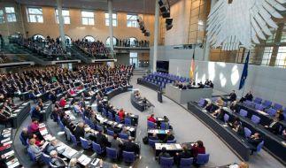 Bundestag: Linke sieht Faschisten bei Opposition in Ukraine (Foto)