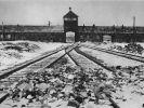 Vernichtungslager Auschwitz-Birkenau. Noch heute verfolgen Nazi-Jäger jene Menschen, die damals als Wächter oder Funktionäre die Verbrechen jener Einrichtungen unterstützten. (Foto)