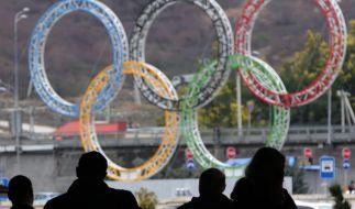 Erstmals seit 20 Jahren ging Russland, zugleich Gastgeber der Olympischen Winterspiele 2014, als Gewinner im olympischen Medaillenspiegel hervor. (Foto)