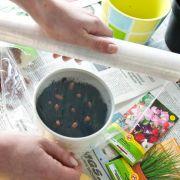 Aufgaben im März: Das Gartenjahr beginnt auf der Fensterbank (Foto)