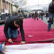 Cayenne statt Knallrot: Der Oscar-Teppich wird ausgerollt (Foto)