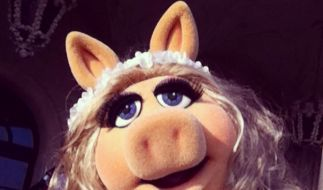 Miss Piggy weiß eben, wie frau sich von ihrer Schokoladenseite zeigt. (Foto)