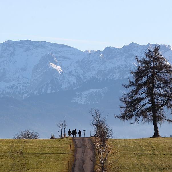 Koks-Paradies Allgäu: Hier rieselt der Schnee! (Foto)