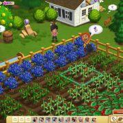 Zynga will mit «Farmville 2» alten Erfolg auf Handys wiederholen (Foto)
