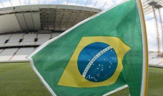 WM-Countdown: Nicht nur Brasilien will den Titel (Foto)