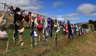 Anstößig oder lustig: Büstenhalter in Cardrona (Neuseeland). (Foto)