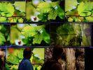 Feinschliff für den Fernseher - Ein gutes TV-Bild ist Handarbeit (Foto)
