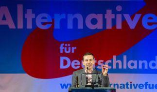 Umfragen sehen AfD für Europawahl bei 5 bis 7,5 Prozent (Foto)