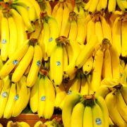 Chiquita und Fyffes formen weltgrößten Bananenhändler (Foto)
