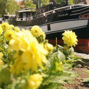 Gartenschauen und Festivals locken Ausflügler (Foto)