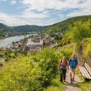 Einer der längsten Wanderwege: Moselsteig geht an den Start (Foto)