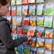 Vor der Aussaat Fruchtfolge im Gemüsebeet planen (Foto)