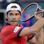 Davis-Cup-Dilemma: Absage Haas, Kohlschreiber nicht fit (Foto)
