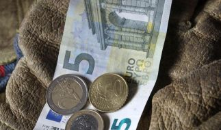 Linke will gegen Altersgrenzen beim Mindestlohn klagen (Foto)