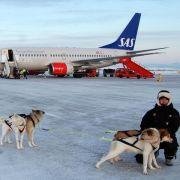 Neues von den Airlines: Transfer mit dem Hundeschlitten (Foto)