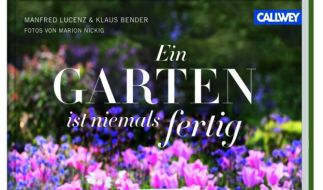Wertvolle Gartentipps für immerblühende Gärten (Foto)