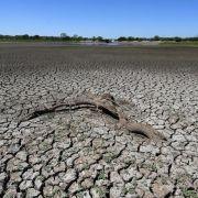 Weltklimabericht zweiter Teil - Erderwärmung verändert Land und Meere (Foto)