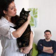 Haarige Nebenbuhler:Haustiere lösen bei Paaren Eifersucht aus (Foto)