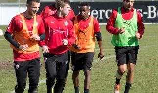 Stürmer Abdellaoue beim VfBStuttgart wieder im Training (Foto)