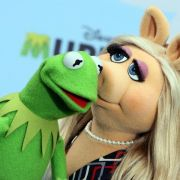 Kermit hat beruflich in Berlin zu tun (Foto)