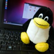 Linux parallel zu Windows installieren (Foto)