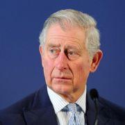Die Krone dankt - Prinz Charles und seine Privilegien (Foto)