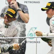 Treuetest für die Silberpfeile Rosberg und Hamilton (Foto)