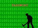 Gefundenes Fressen:Mit einem gestohlenen Passwort können Hacker großen Schaden anrichten. (Foto)